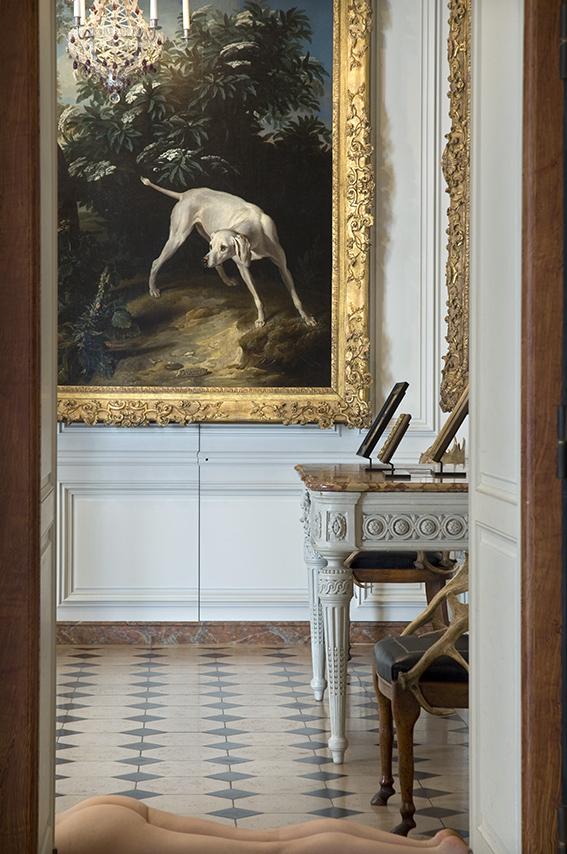 Chienne blanche devant un buisson de sureau (1714), Carole, fauteuil en bois de daim et cuir (XIXe siècle). Musée de la Chasse et de la Nature. 2012